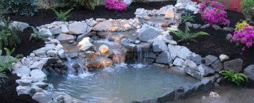 Foto del laghetto da giardino n.01