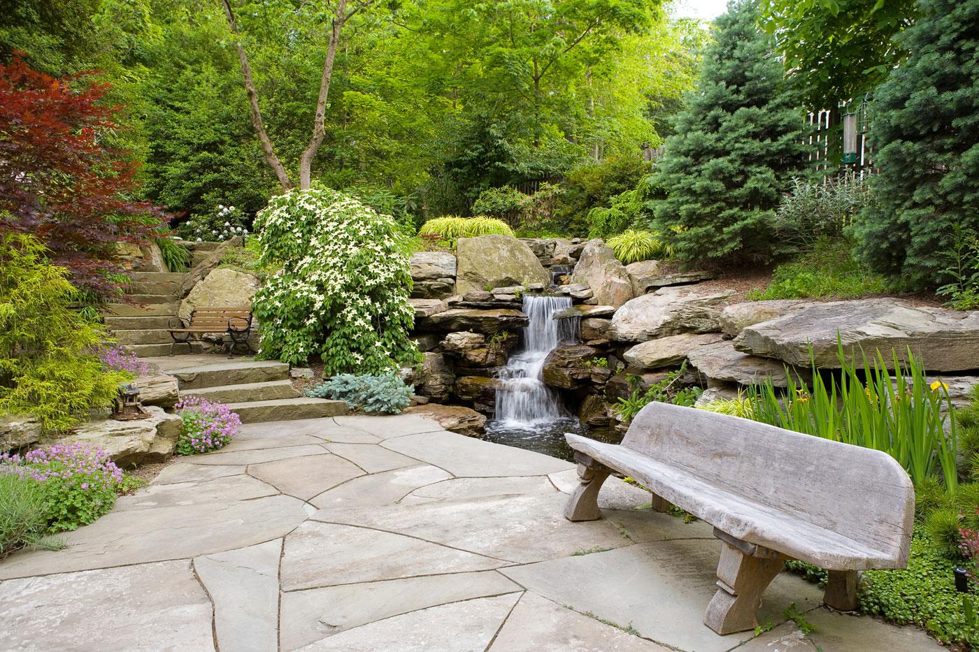 Photo of the garden pond n.11