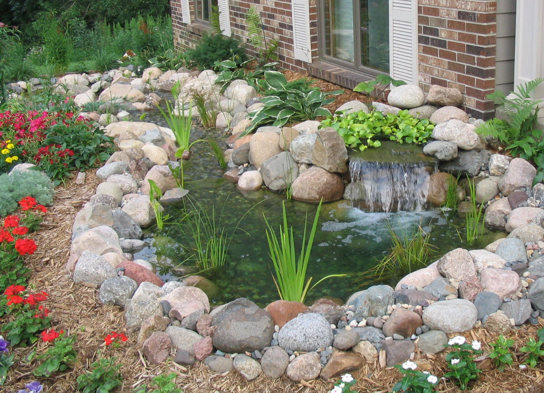 Photo of the garden pond # 15