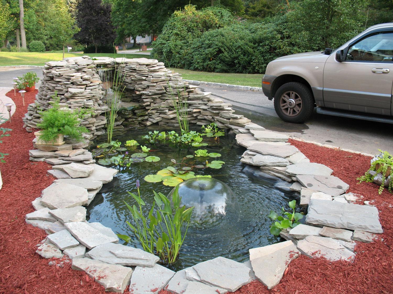 Photo of the garden pond n.04