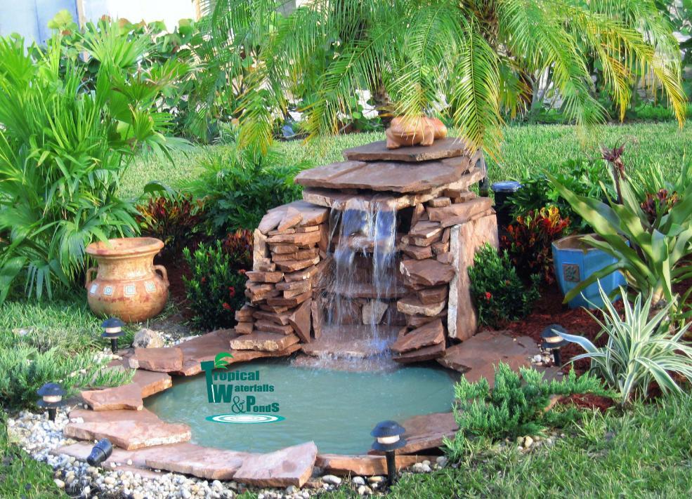 Photo of the garden pond n.06