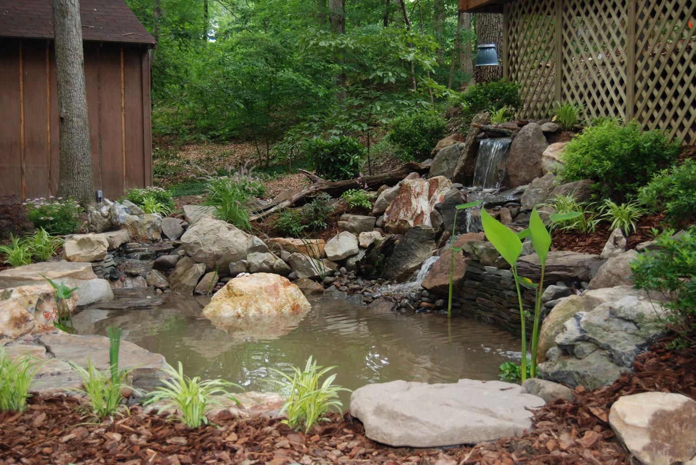Photo of the garden pond 23