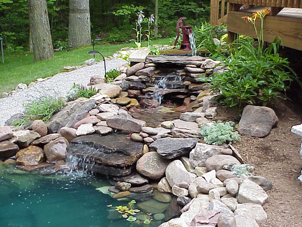 Photo of the garden pond n.05
