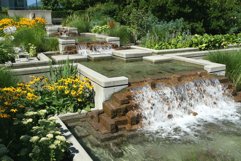 Photo of the garden pond # 19