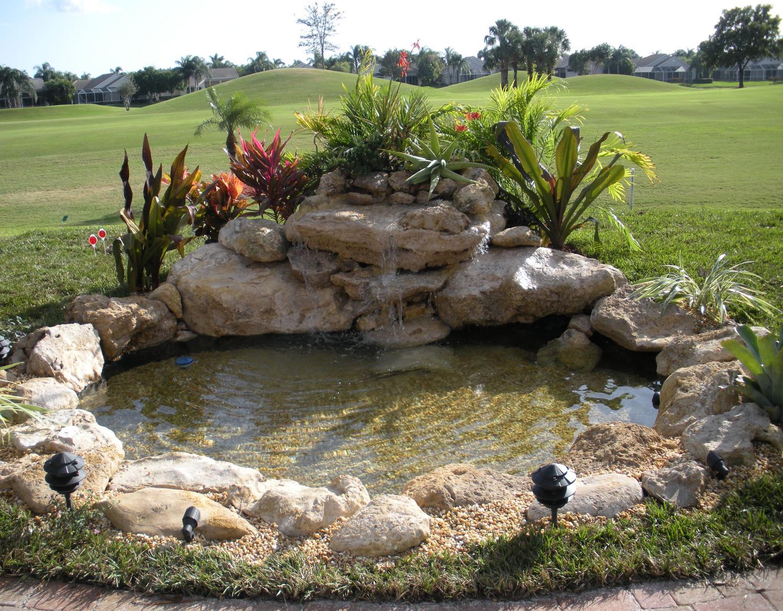 Photo of the garden pond n.27