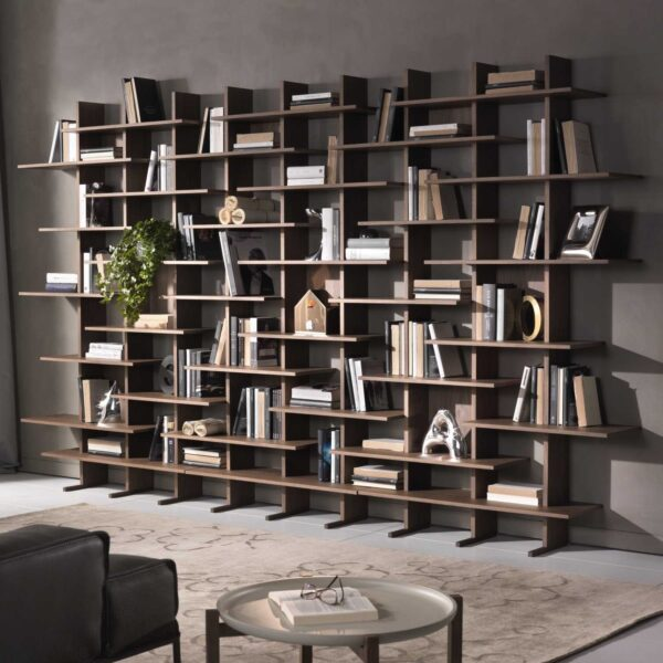 full-wall-bookcase-1