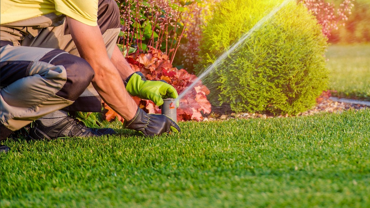how-to-choose-the-indoor-irrigation-system-1