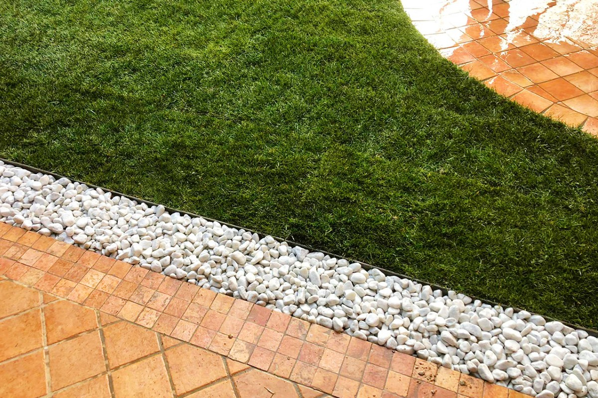 Ornamental lawn_ types, how and when to sow 3