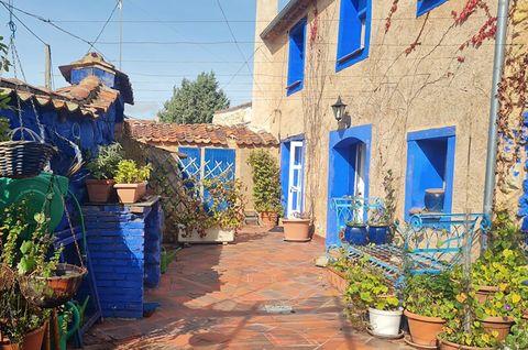 blue house by lucía bosé in brieva segovia patio with barbecue