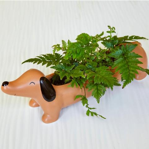 dachshund flower pot
