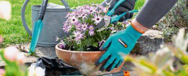 come-scegliere-guanti-giardinaggio-6