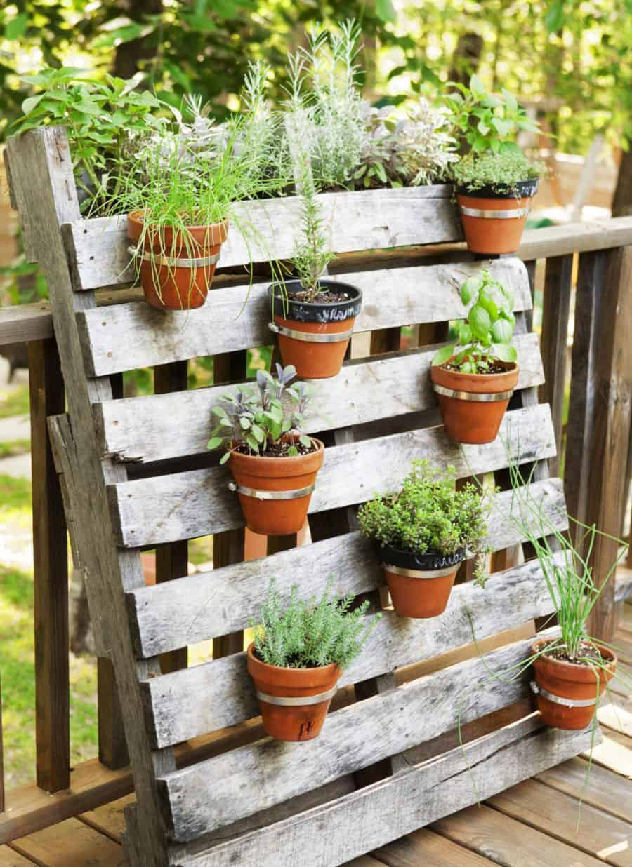 decorate-garden-on-the-go-5