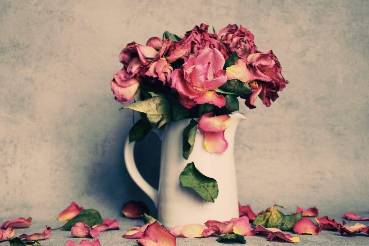 Flowers, Dried