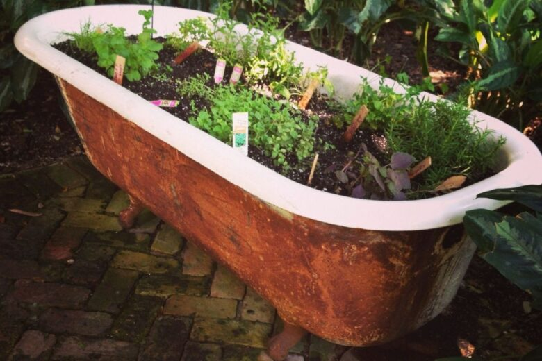 how-to-create-a-vegetable-garden-in-used-bathtub (12)