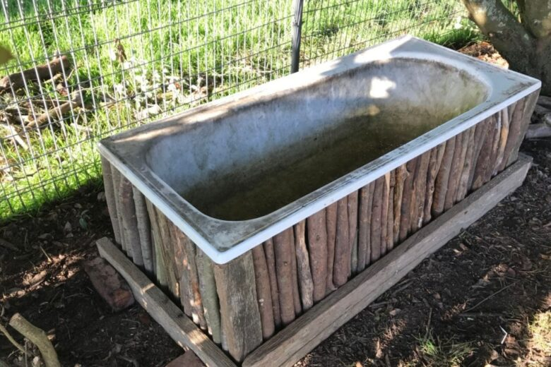 how-to-create-vegetable-garden-inside-used-bathtub (4)