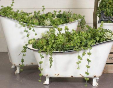 come-creare-orto-dentro-vasca-da-bagno-usata (11)